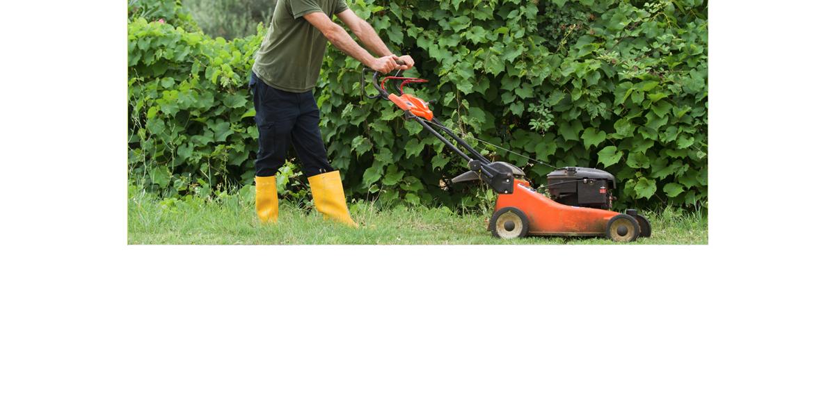 Services à domicile : jardinage