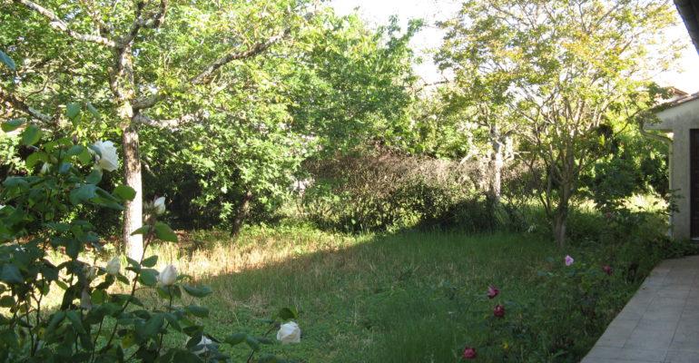Jardin avant passage de l'ASPE